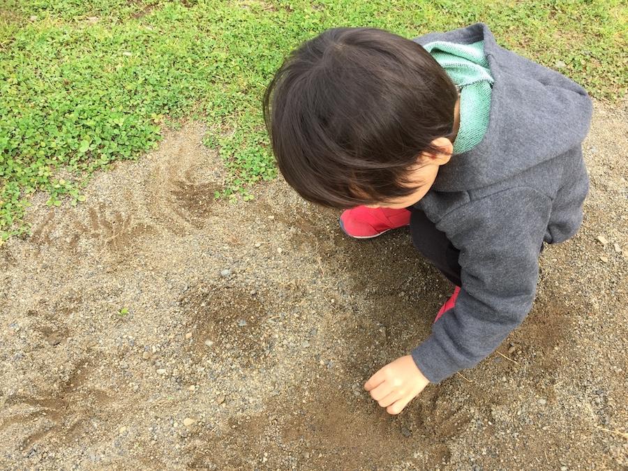 土のままになっている庭で遊ぶ子供